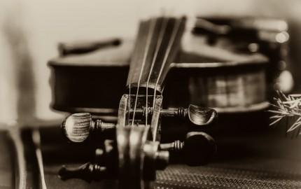 Violine at Christmas