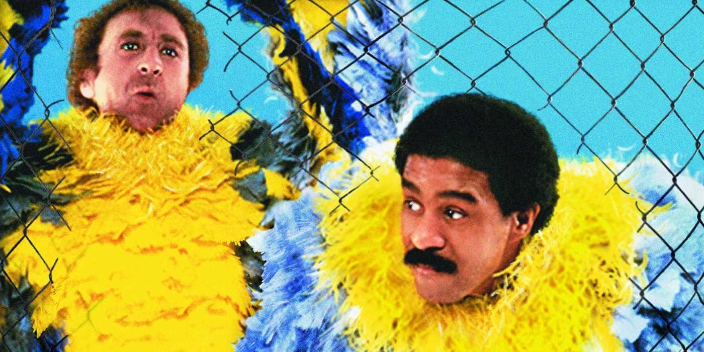 Movies like Stir Crazy: Prison Comedies • itcher Magazine