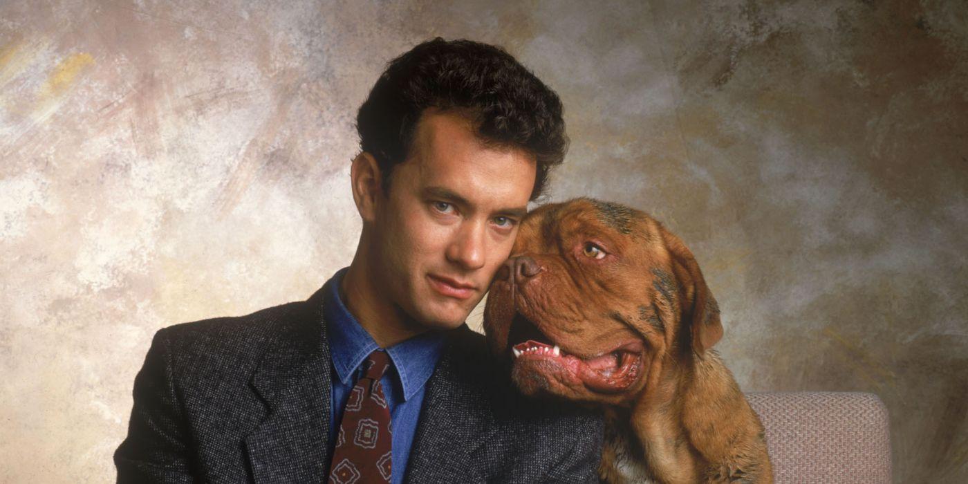 Movies like Turner & Hooch: Oddball Animal Antics • itcher ...